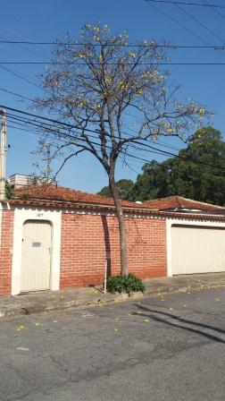 Casa Padrão Jd Rosa Maria 3 dormitorios 2 banheiros 4 vagas na garagem